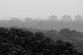 misty-view